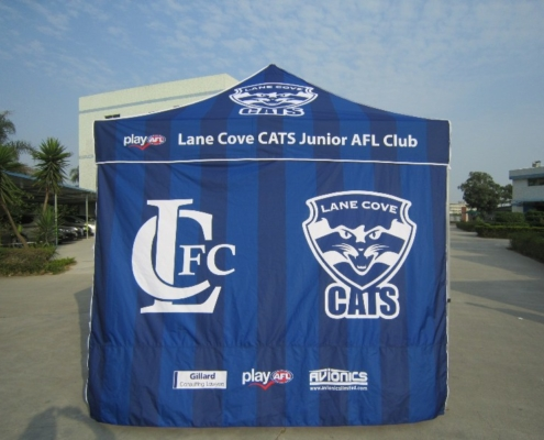 sports tent with printed roof and wall size 3mx3m
